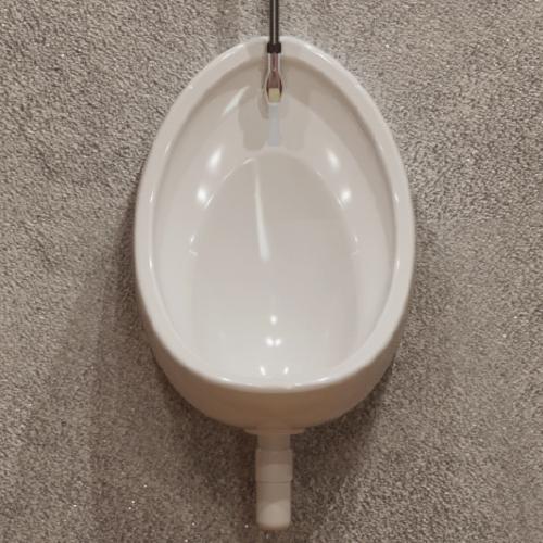 Warwick-Urinal-Exposed-Bowl-500-cgi